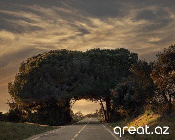 Dünyada ən gözəl yerlər (44 Foto)