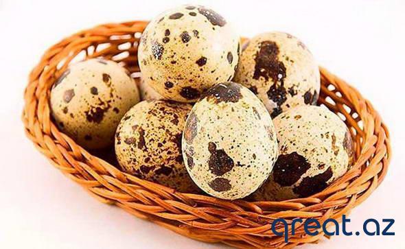 Bildirçin yumurtaları nə qədər faydalıdır